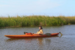 Man kayaks along the Apalachicola River at Apalachicola, Florida. Sea oats and sawgrass can be seen behind him.