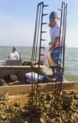 Oyster fishermen using tongs to work in Apalachicola Bay, Fla..