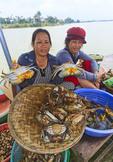 Women sell crabs at market along Thu Bon River in Hoi An, Vietnam.