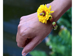 Woman's hand with bracelet made of margarita flower seeds and a margarita blossom. Riviera Maya, Mexico.