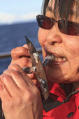 Inuit woman eats raw narwhale (whale) blubber and skin the traditional way using an ulu knife to slice off pieces as she holds the meat by her teeth.