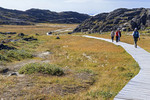 Tourists hike along boardwalk across tundra leading to Jakobshavn Glacier overlook at Ilulissat, Greenland.