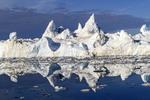 Icebergs choke Disko Bay off Ilulissat, Greenland, summer.