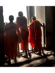 Buddhist monks visiting Angkor Wat, the largest Hindu temple complex in the world.