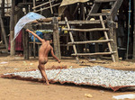 Little boy plays near fish being dried to make fish paste in Kompong Pluk, a village of stilt houses near Siem Reap, Cambodia.