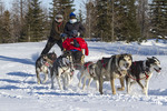 Visitors go for dogsled ride with Wapusk Adventures dog sledding operation.  Churchill, Manitoba, Canada.