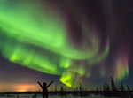 Woman feels joy watching northern lights (aurora borealis) from just outside Churchill, Manitoba.