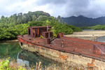 Beached cargo barge with palm tree growing out of its deck. Kosrae, Micronesia.