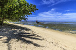 Young girl plays on rope swing along a beach on the tropical island of Kosrae, Micronesia.
