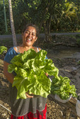 Local woman holds lettuce she had grown in a pot outside her home in Kosrae, Micronesia. Locals grow their vegetables in pots because the soil is poor and affected by sea salt.