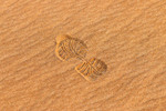 Shoe print in multicolored desert sand