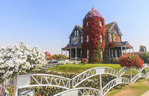 House covered in flowers at Dubai's Miracle Garden