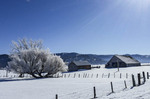 Winter scene of a farm in central Idaho.