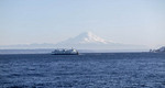 View of Mt. Rainier and Washington State Ferry from Bainbridge Island, Washington, USA.