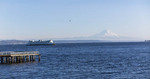 View of Mt. Rainier and Washington State Ferry from Bainbridge Island, Washington, USA.