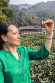 Local woman holds a yellow tea blossom at Meijiawu Tea Village