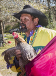 Rodney Victorian, chicken caption, holds one of his prize roosters for the  Mardi Gras Chicken Run