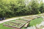 Herb and vegetable garden which supplies Cedarbrook Lodge's upscale gourmet Copperleaf Restaurant near Seattle.