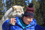 Woman meets Scrappy Dave, one of the wolves on a guided wolf walk