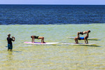 Yoga on a stand up paddle board, taught at Bahia Honda State Park along the Florida Keys by Serenity Eco Therapy.