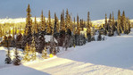 Early morning view of Big White Ski Resort village ski runout on a sunny day.
