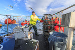 Stacking traps while fishing for prawns on Commercial fishing boat Nordic Rand off Vancouver Island, BC, Canada