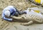 Sandcastle Contest along Cannon Beach in Oregon, USA.