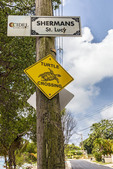 Turtle crossing sign in Speightstown, Barbados.