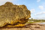 """The Rock,"" located along Bathsheba Coast on the rugged east coast of Barbados"