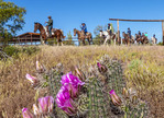 Guests leave the breakfast corral on horseback during a breakfast ride at White Stallion Ranch.