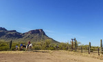 Guests  on horseback arrive for breakfast at White Stallion Ranch, a dude ranch just outside Tucson, AZ.