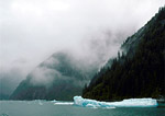 Shrouded in fog, summer icebergs float in Stephen's Passage, off the coast of Admiralty Island near Tracy Arm Fiord, Alaska.