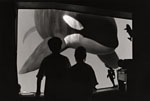 "Spellbound with awe and wonder, two children, ages 7 years (girl) and 9 years (boy), interact with Keiko, the male killer whale star of ""Free Willy"" via a scientific viewing window during the famous whale's rehabilitation at the Oregon Coast Aquarium, Newport, Oregon."