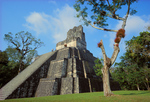 Temple II, Great Plaza, Tikal National Park