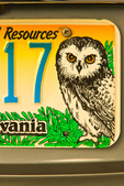 Pennsylvania Conserve Wild Resources Saw-whet Owl license plate