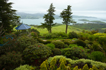 View of Otago Peninsula and Harbour from the gardens of Larnach Castle