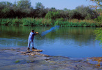 Man throwing cast net, Rio Grande (River)