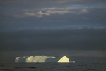 Iceberg in late evening light, Scotia Sea