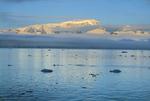 Glaciated mountains, Antarctic Sound, Adelie Penguin porpoising