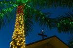 Cross and Christmas palm at twilight, Sanibel Community Church