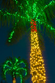 Palms with Christmas lights, nightfall, Sanibel Community Church