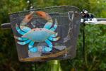 Crab art on bicycle handlebar basket