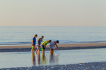 Family of shellers, tidal pool discovery, low tide