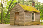 Thoreau House Replica, Log Cabin in Woods, Walden Pond, Concord, Massachusetts