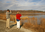 Birdwatchers at Marsh, Great Meadows National Wildlife Refuge, Concord, Massachusetts