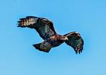 USS Nautilus Submarine SSN-571, Groton, Connecticut