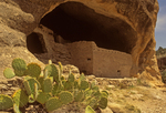 Prickly Pear Cactus and Cliff Dwelling, Gila Cliff Dwellings National Monument, Mogollon Puebloan Ruin, New Mexico