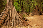 Sierra Miwok Bark Houses, Miwok Village, Indian Village of the Ahwahnee, Yosemite Valley, Yosemite National Park, California