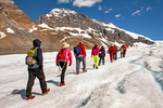 Hikers on Athabasca Glacier, Columbia Icefield, Icefields Parkway, Canadian Rockies, Jasper National Park, Alberta, Canada