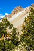 Hiker Viewing Kings Creek Falls, Lassen Volcanic National Park, California